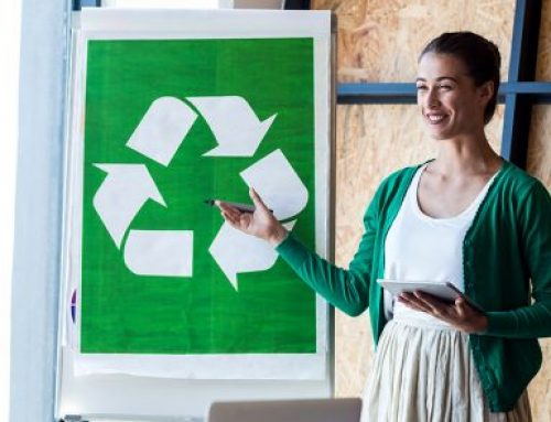 Offices Are Going Green – Gradually